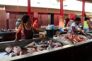 Intercambio-com-as-Palaies-de-Cabo-Verde-de-23-06-2018--01-07-2018_8